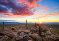 Arizona-Sonora: gran corredor económico
